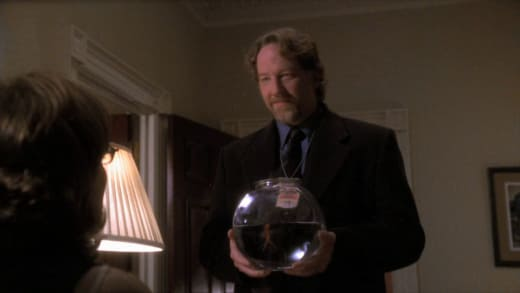 They Aren't Supposed to Swim - The West Wing Season 1 Episode 9