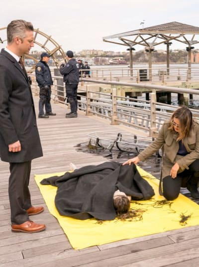 (TALL) Is Rob Miller Back? - Law & Order: SVU Season 20 Episode 24