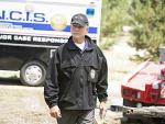 Special Agent L.J. Gibbs