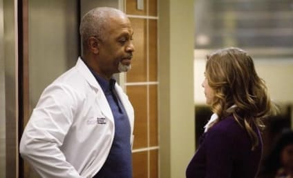 James Pickens, Jr. Dishes on Season Six of Grey's Anatomy