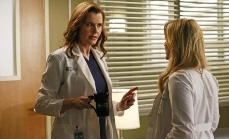 Speech from Herman - Grey's Anatomy Season 11 Episode 8
