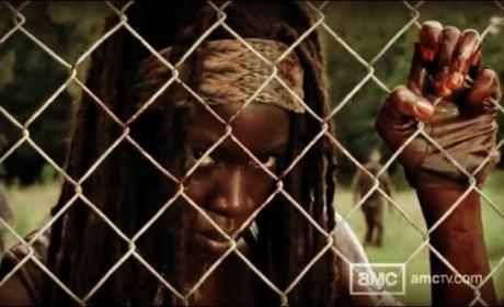 Michonne Behind a Fence
