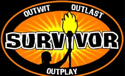 Survivor 16: Fans vs. Favorites