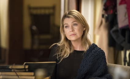 Ellen Pompeo Hints at Grey's Anatomy End Date