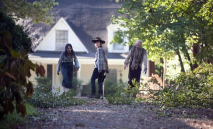 The Walking Dead: Watch Season 4 Episode 9 Online