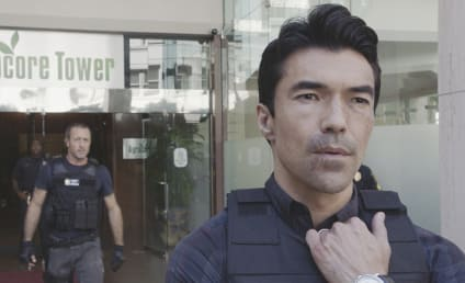 Hawaii Five-0 Season 8 Episode 17 Review: The Fire Blazed Up, Then Only Ashes Were Left
