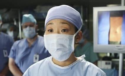 Grey's Anatomy Spoilers: Cristina's Big Week