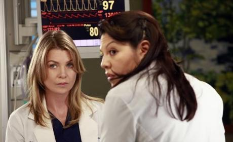 Callie and Mer