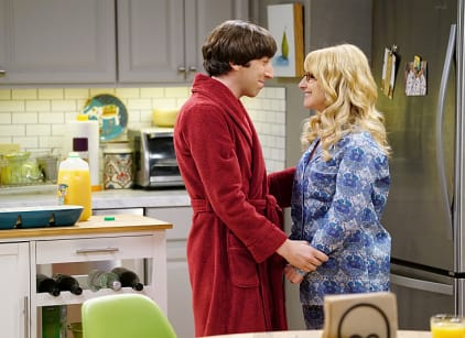 Watch The Big Bang Theory Season 9 Episode 16 Online