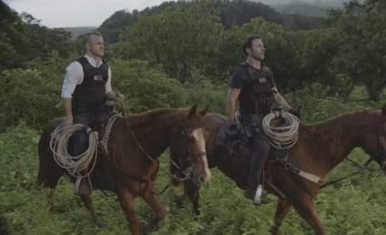Hawaii Five-0 Season 10 Episode 19 Review: E ho'i na keiki oki uaua o na pali (Home go the very tough lads of the hills)