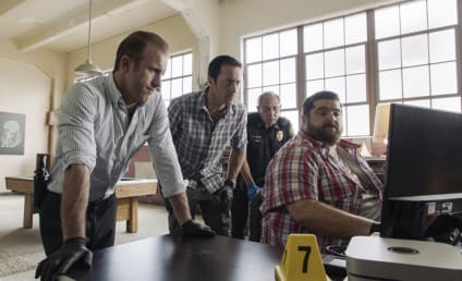 Watch Hawaii Five-0 Online: Season 9 Episode 25