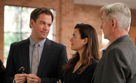 Gibbs With Tiva