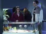The Aquarium Thanksgiving - The Big Bang Theory