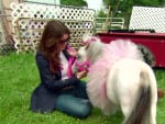 Meeting the Mini-Horse - The Real Housewives of Beverly Hills