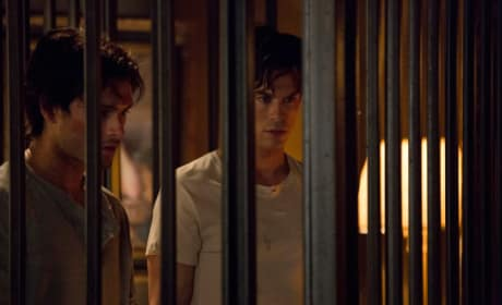Enzo and Damon
