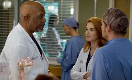 Guess Who's Back? - Grey's Anatomy Season 13 Episode 14