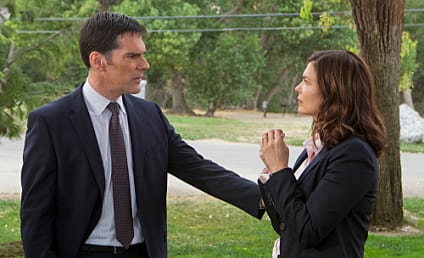Jeanne Tripplehorn Debuts on Criminal Minds: Hit or Miss?