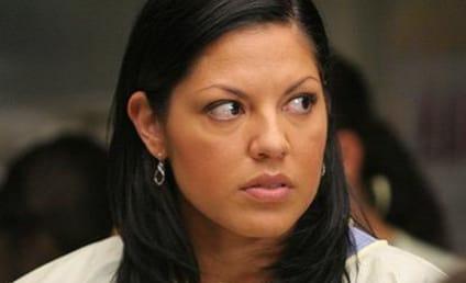 Grey's Anatomy Spoilers: Sara Ramirez Rumors