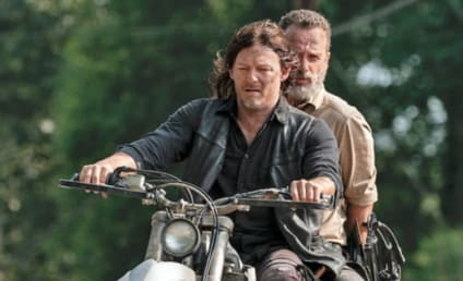 The Walking Dead: Norman Reedus Pleads with Andrew Lincoln - Be With Us For the End!