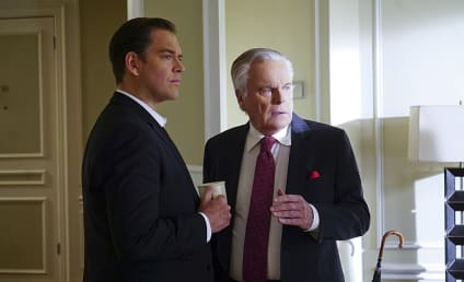 NCIS Season 13 Episode 19 Review: Reasonable Doubts