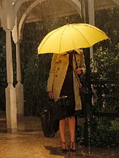 The Woman Under The Umbrella - How I Met Your Mother