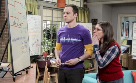 Something Shocking - The Big Bang Theory Season 10 Episode 19