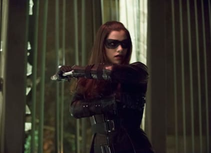 Watch Arrow Season 2 Episode 17 Online