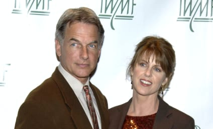 NCIS Casts Mark Harmon's Wife, Pam Dawber: Who Is She Playing?