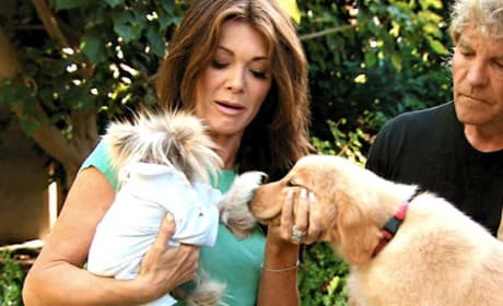 The Real Housewives of Beverly Hills: Pick a Favorite!