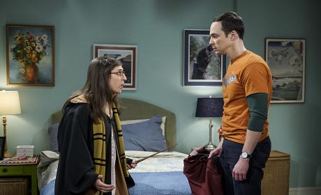 Be Careful With the Wand! - The Big Bang Theory Season 10 Episode 11