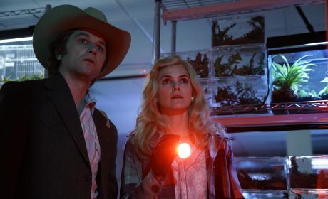 The Midges - The Americans Season 5 Episode 3