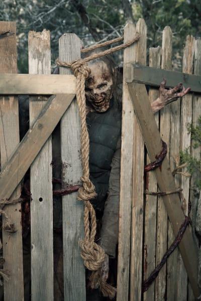 The Walkers Arrive - Fear the Walking Dead Season 5 Episode 7