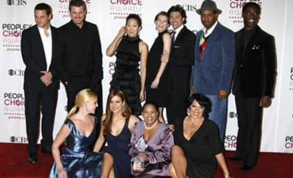 "Grey's Anatomy Cast in ""Celebrity 100"""