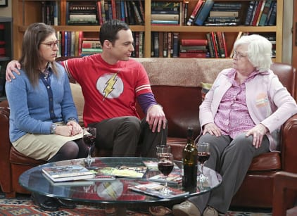 Watch The Big Bang Theory Season 9 Episode 14 Online