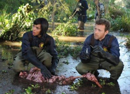Watch Bones Season 9 Episode 21 Online