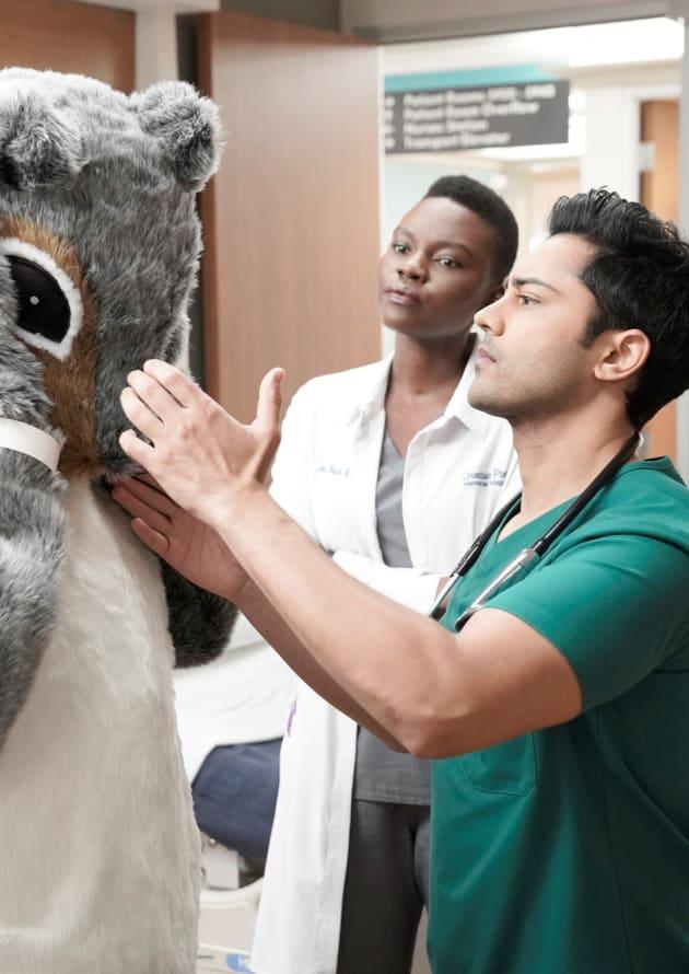 Furry Friend - Tall - The Resident Season 2 Episode 21