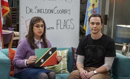 The Big Bang Theory Midseason Report: Funniest Moment, Best Character & More!