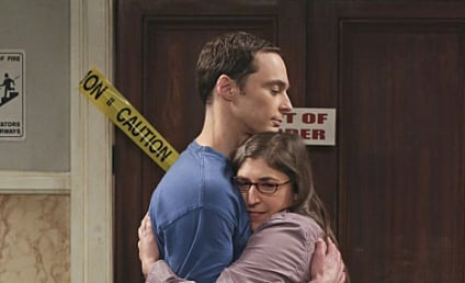 The Big Bang Theory: Watch Season 8 Episode 17 Online