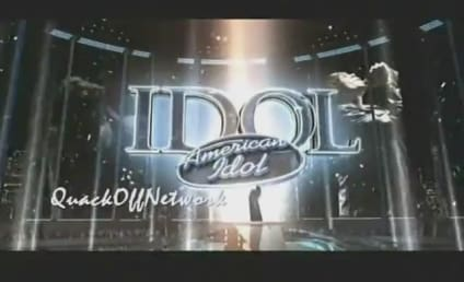 American Idol Rundown: Who Was Your Favorite Finalist?