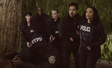 Murder in New York - Criminal Minds