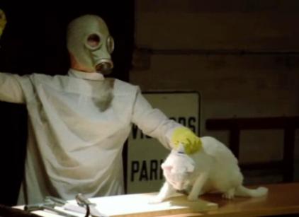 Watch Wilfred Season 2 Episode 10 Online