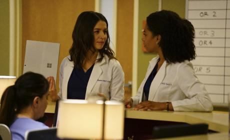Chatty Siblings - Grey's Anatomy Season 13 Episode 22