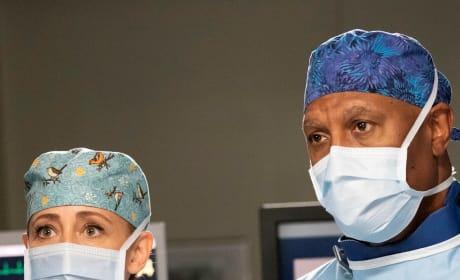 Teddy and Richard Team Up - Tall - Grey's Anatomy Season 15 Episode 14
