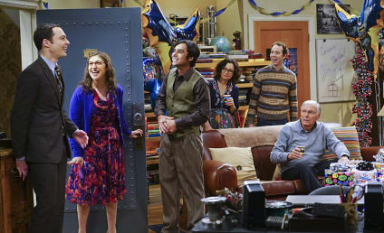 The Big Bang Theory Season 9 Episode 17 Review: The Celebration Experimentation