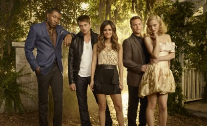 Rachel Bilson Weighs In on Hart of Dixie Revival Talk