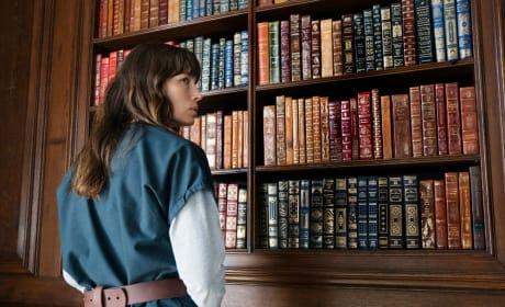The Library - The Sinner Season 1 Episode 6