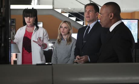 The Rest of the Team - NCIS Season 12 Episode 15