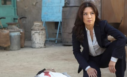 Agents of S.H.I.E.L.D. Season 2 Episode 17 Review: Melinda