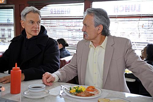Gibbs and Mike