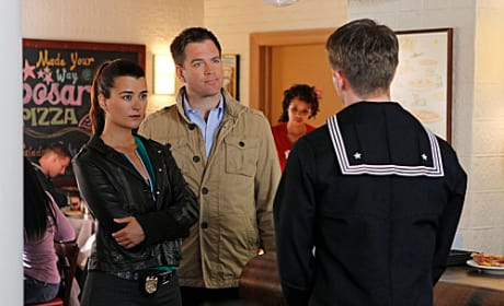 Cute Tiva Photo